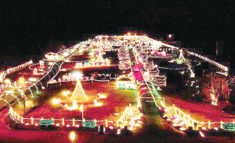 Family Fun: Holiday Light Tours