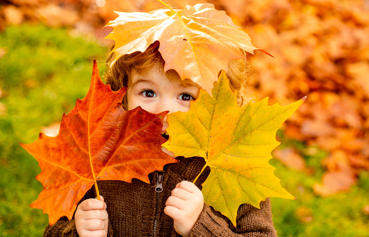20+ FAMILY FUN Things To Do For September