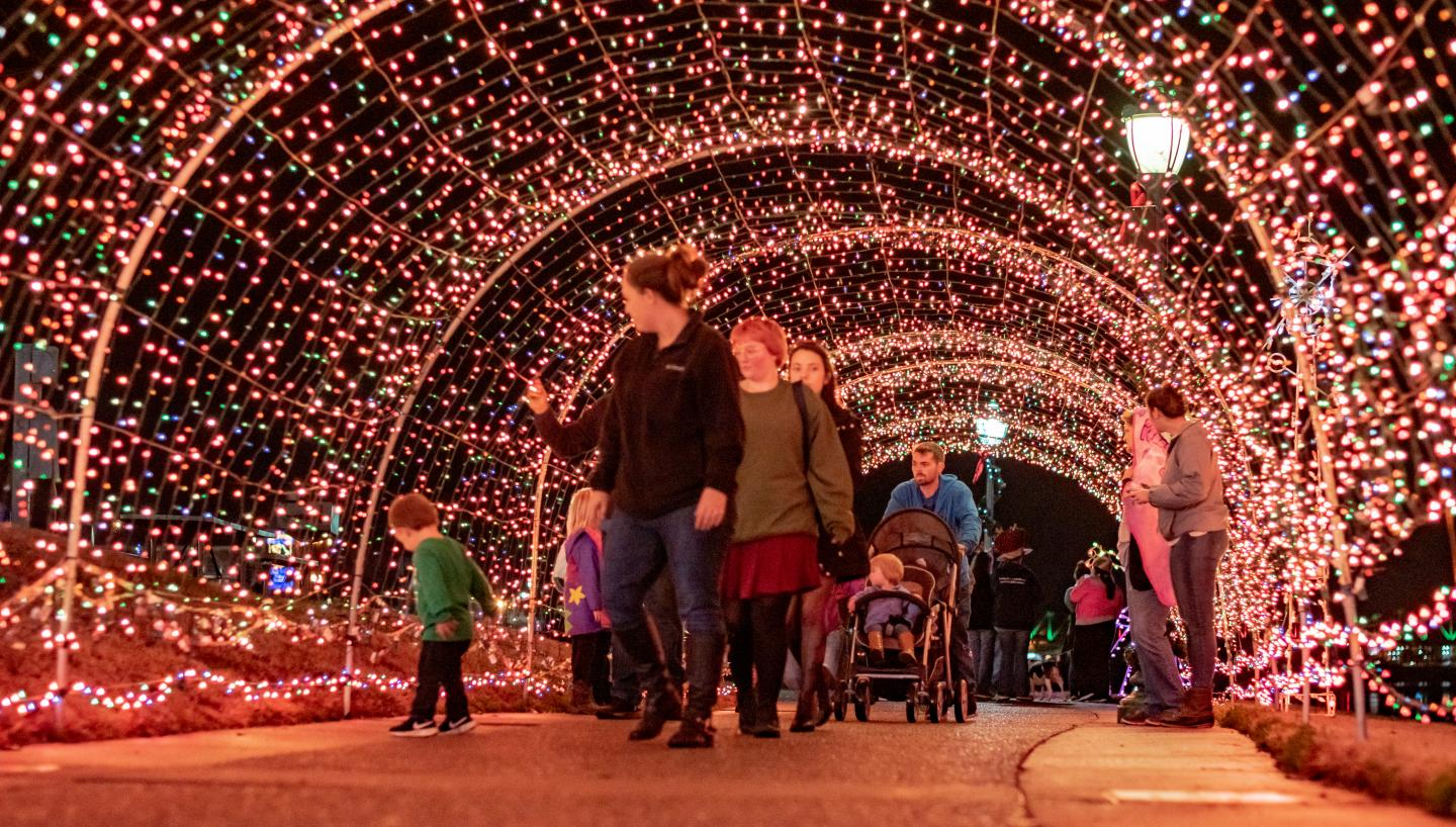 Cheekwood's Holiday LIGHTS To Open Nov. 20