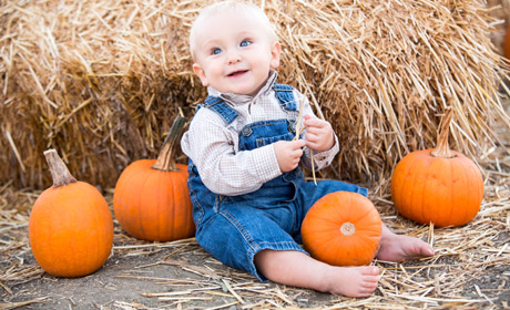 Middle Tennessee Pumpkin Farms