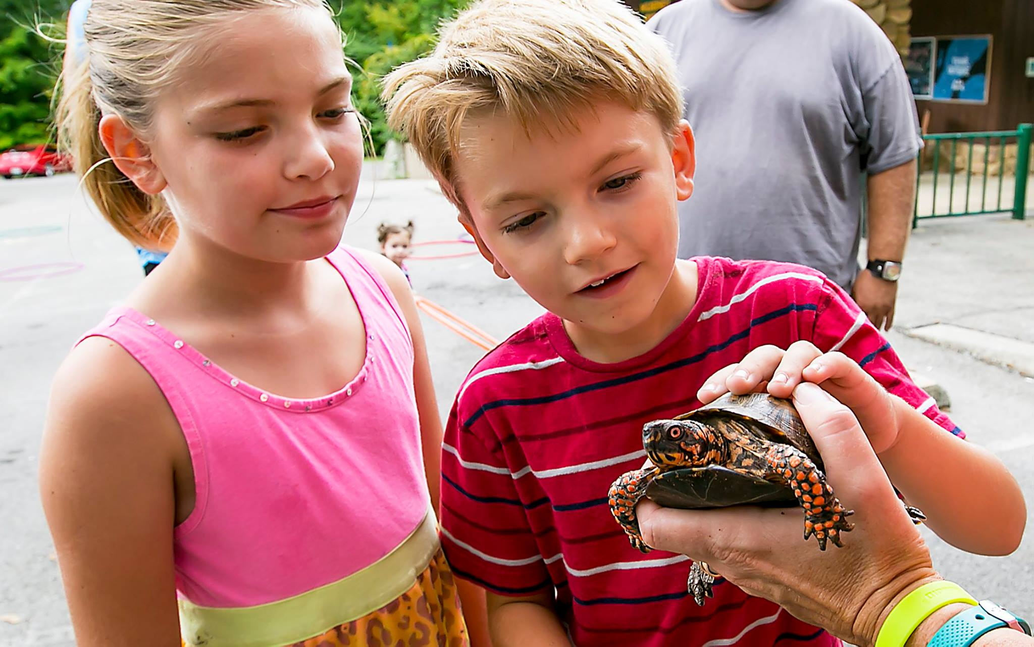 Animal Encounters at Wilderness Station
