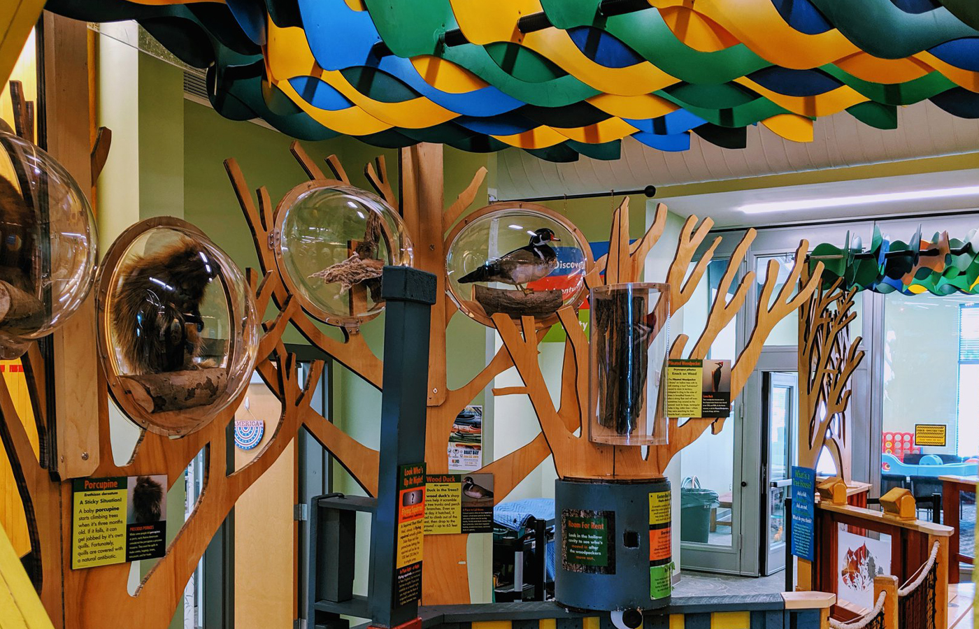 SOAC's New TreeHouses Exhibit
