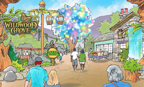 Dollywood Grows in 2019