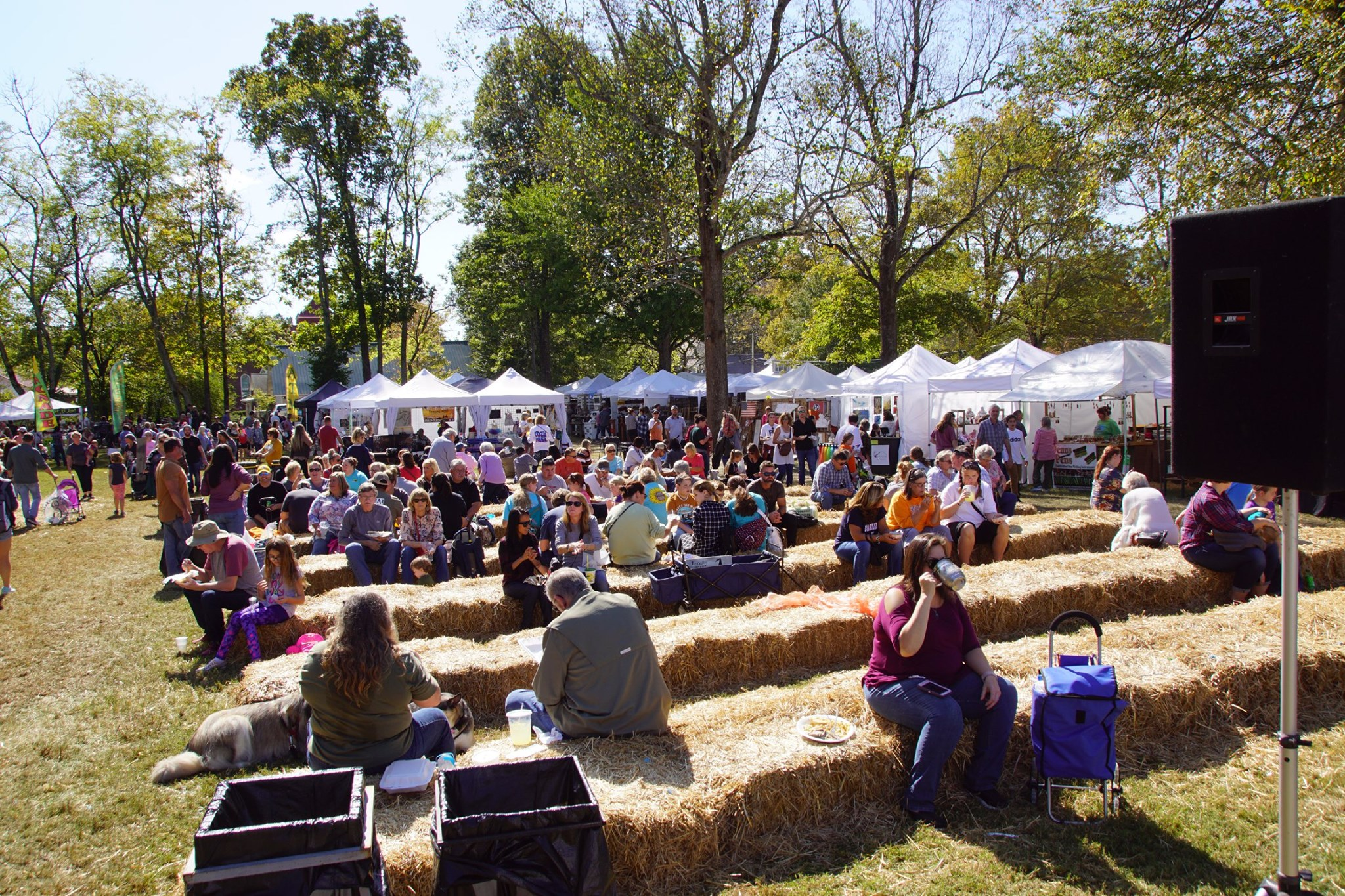 45th Annual Bell Buckle Webb Art and Craft Festival