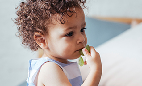 Solid Foods Too Soon Can Cause Choking