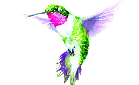 Don't Be a Helicopter; Consider the Hummingbird