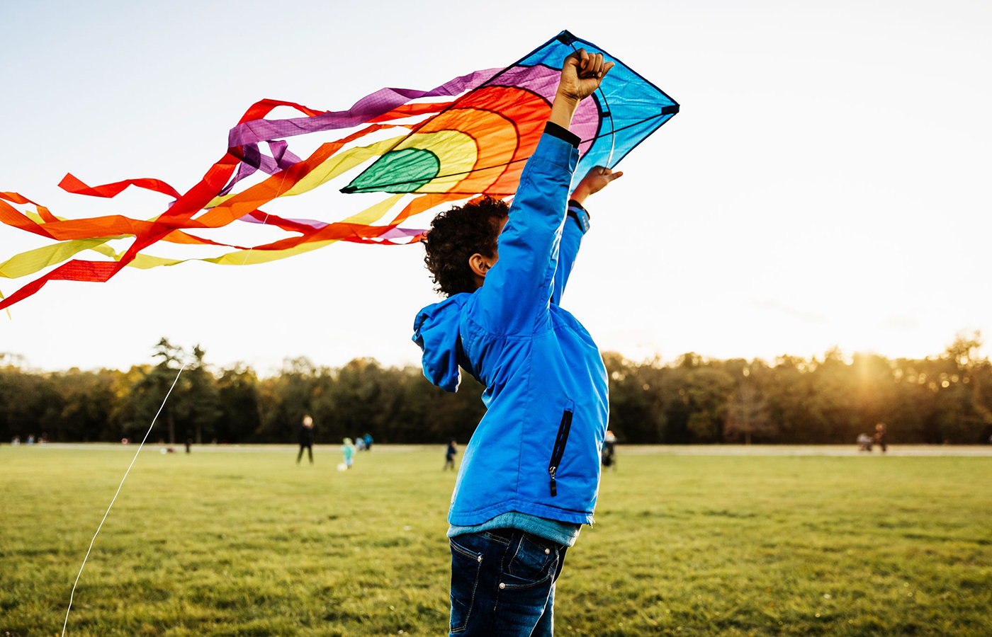 Reach the Highest Heights With These 12 Best Kites
