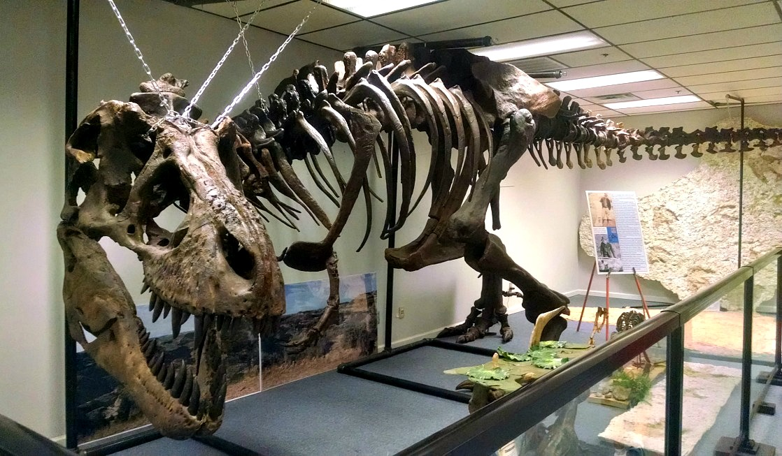 Dinosaurs?! Earth Experience Reopens in Murfreesboro