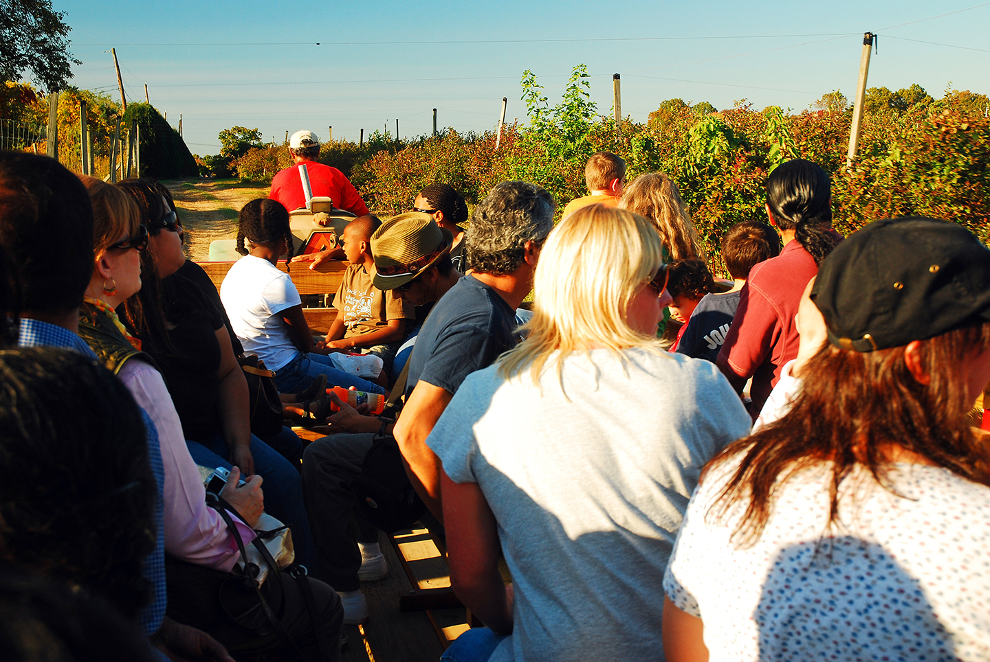 Therapeutics Fall Festival and Hayride Set for Oct. 21