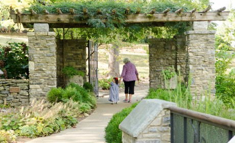 Half Price at Cheekwood Aug. 3-4