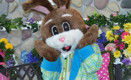 2019 Easter Bunny at the Malls