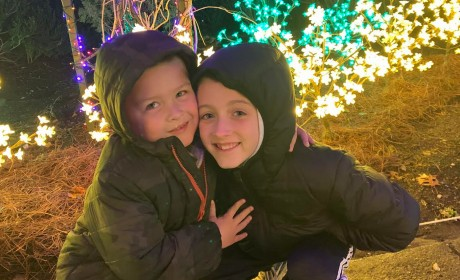 Mom Report: Cheekwood's Magical Holiday LIGHTS
