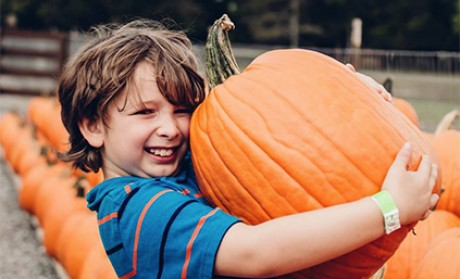 Lucky Ladd Farm Earns Accolade as a Top Pumpkin Patch in the Nation!