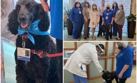 Pet Therapy Program Launches at Ascension Saint Thomas Rutherford