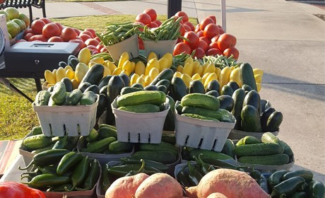 Farmer's Markets Open