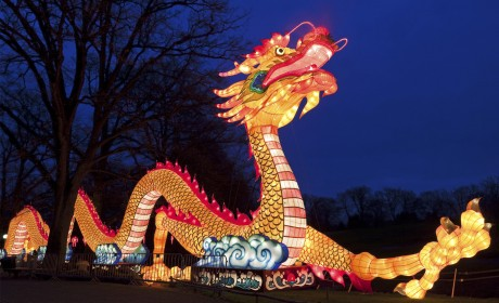 Nashville Zoo to Host Largest Lantern Festival in U.S.