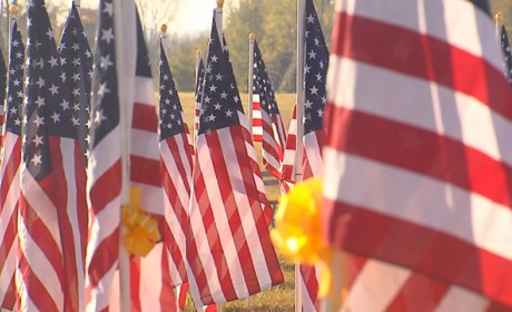 The Hermitage Honors Veterans With 1,000 Flags, Free Fireworks Show