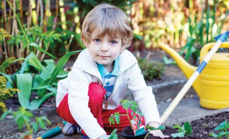 Dig Into a Garden With the Kids!