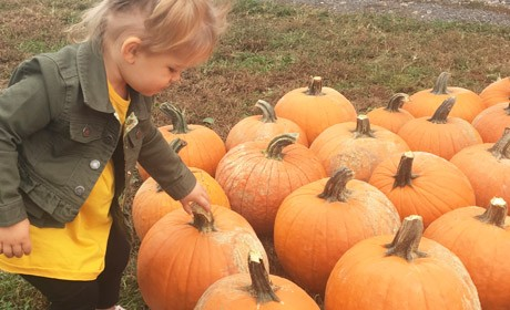 Fall Fun at Gentry's Farm