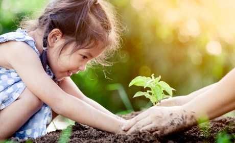 8 Outside Nature Activities That Are Lots of Fun for Kids
