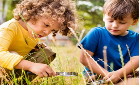Local Nature Programs Great for Kids