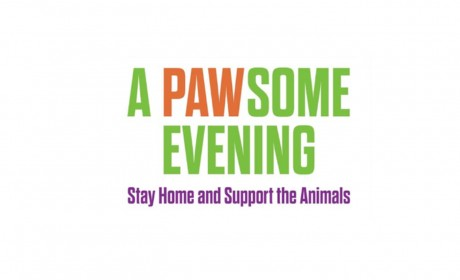 Support 'PAWsome' Events for WC Animal Center