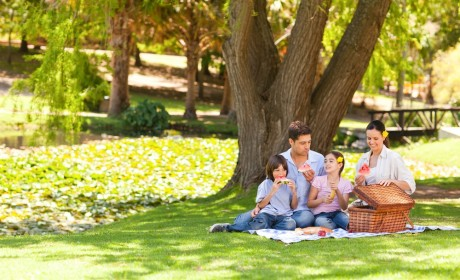 7 Parks Perfect For Family Picnics In Sumner Co.