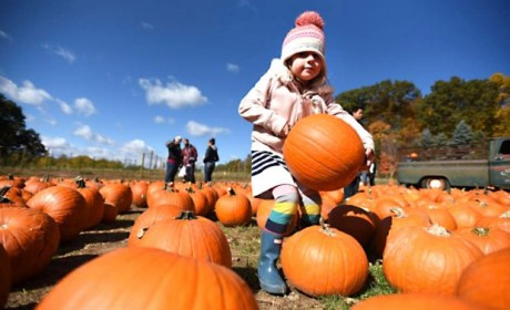 Top Things To Do With Your Kids in September