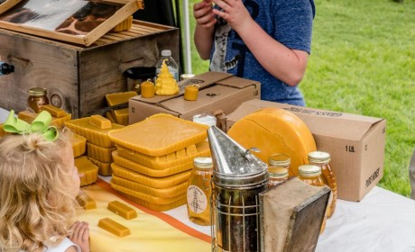 First Horizon Park to Host Tennessee Honey Festival on Oct. 3