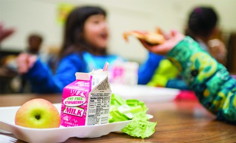 Pack a Zero-Waste School Lunch