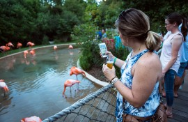 'September Sips' at Nashville Zoo