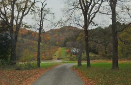 Fall Color Hikes