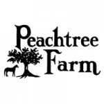 Peachtree Farms Horsemanship Camp