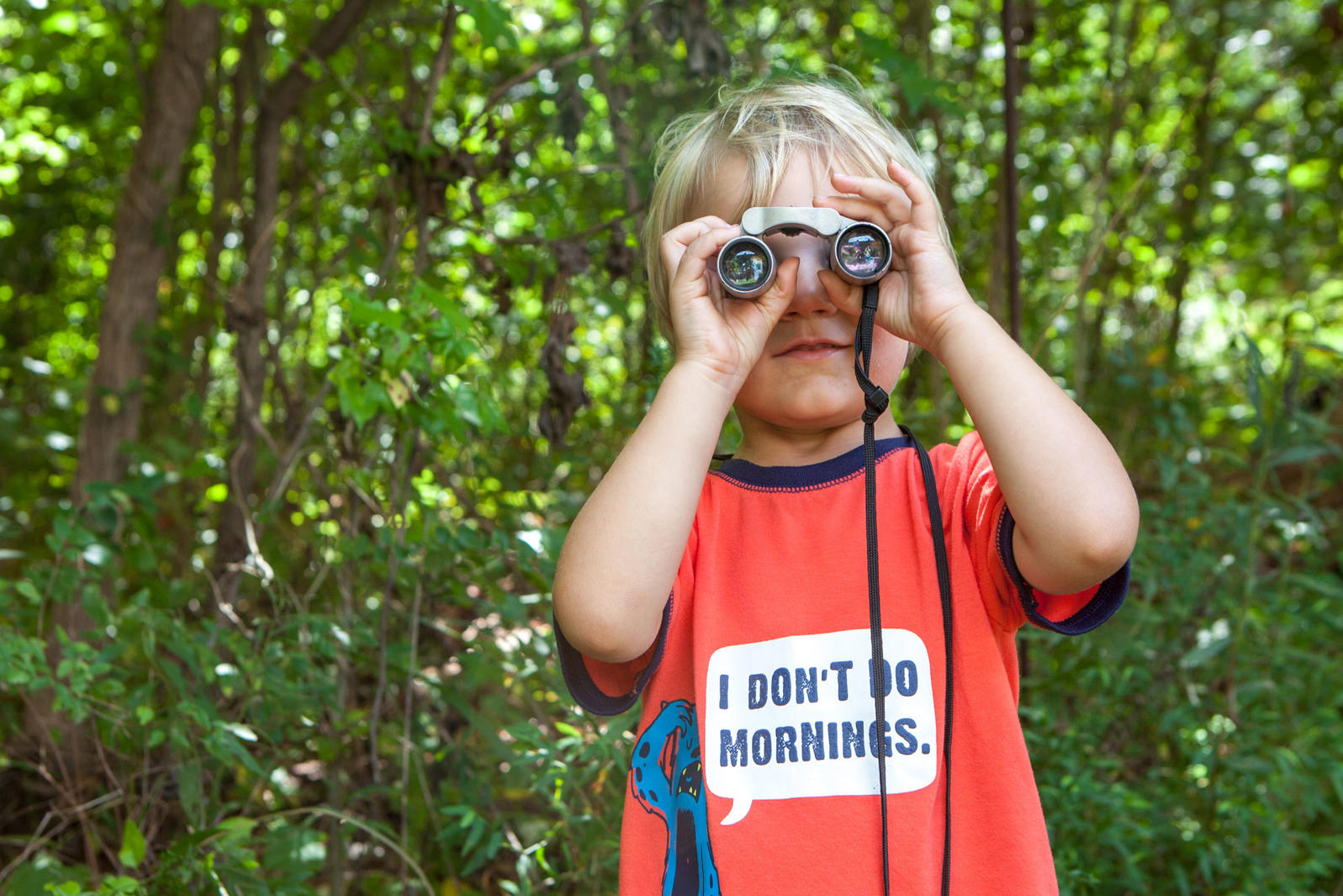 Search for Birds at the Nature Center